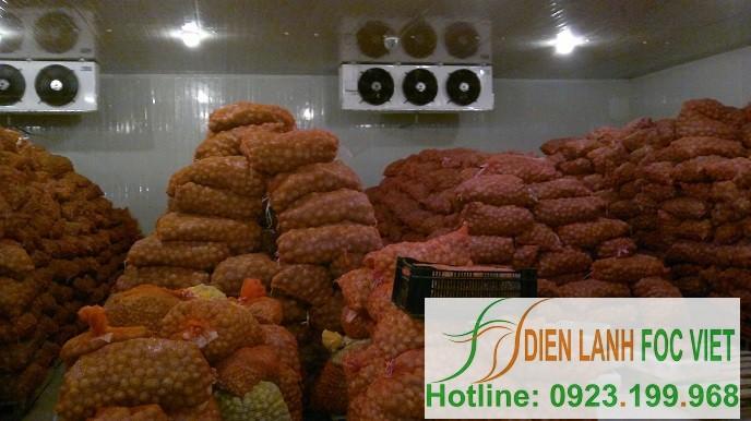 kho lạnh bảo quản khoai tây giống