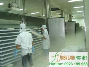 Tiến trình lạnh đông thủy sản | Kho lạnh bảo quản thủy sản