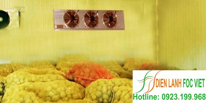 lắp đặt kho lạnh bảo quản khoai tây giống
