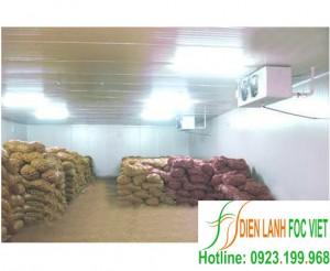 Dịch vụ lắp đặt kho lạnh bảo quản nông sản