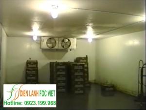 Bảo quản rau quả bằng kho lạnh – Kho lạnh bảo quản