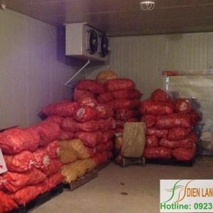 lắp đặt kho lạnh bảo quản cà rốt
