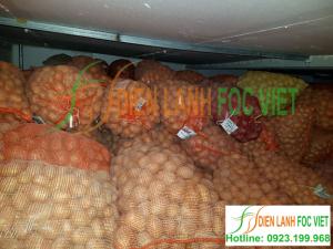 Các điều kiện bảo quản trong kho lạnh – kho lạnh bảo quản nông sản